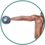 testosterone boosting exercise